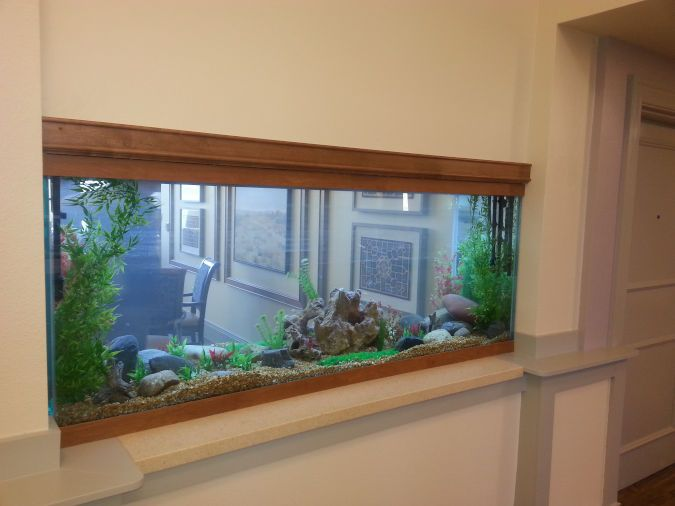 An image showing an aquarium inside the wall of an assisted living area.