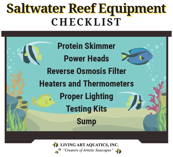 Graphic featuring a list of the equipment needed for a saltwater reef aquarium.