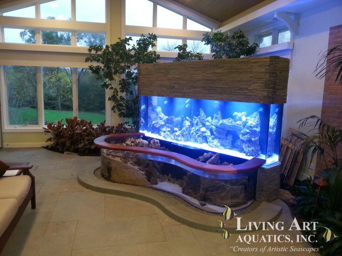 Large well-lit acrylic aquarium in wooden cabinet with fish