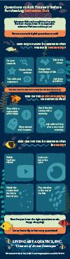 Thumbnail of infographic about buying saltwater fish.