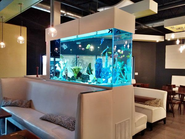Picture of a 400 gallon fish tank