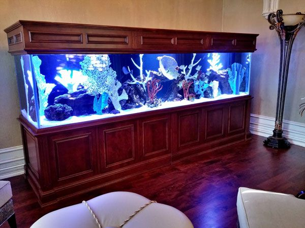 Picture of 600-gallon hardwood fish tank