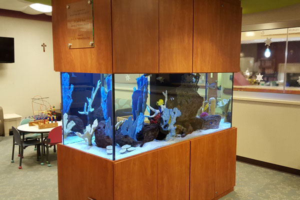 Picture of a commercial aquarium in a doctor's office.