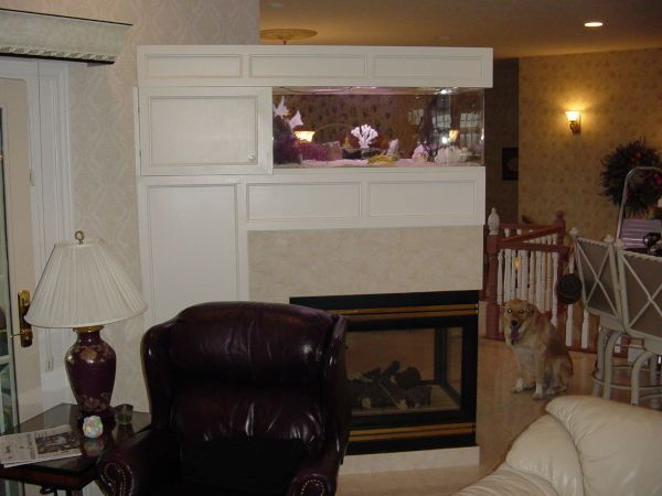 An image showing an aquarium placed on a high stand in a residential home.